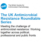 BSAC roundtable image